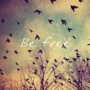 Photo - Birds be free